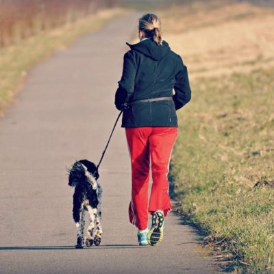 Need a Workout Buddy? Try Man's Best Friend