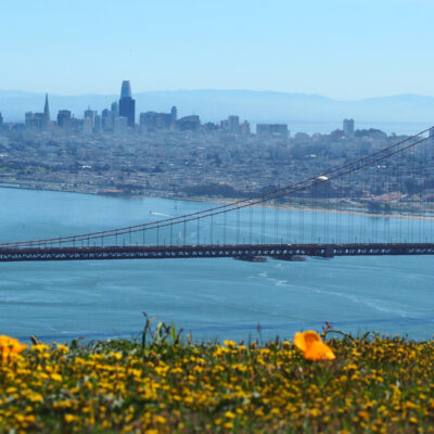 Things I Didn't Know About San Francisco