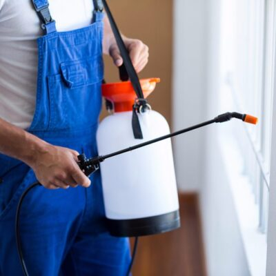 10 Benefits of Professional Pest Control Services